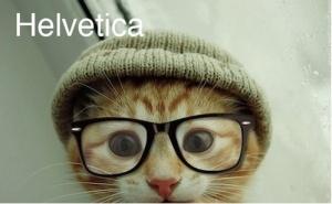 Helvetica Cat
